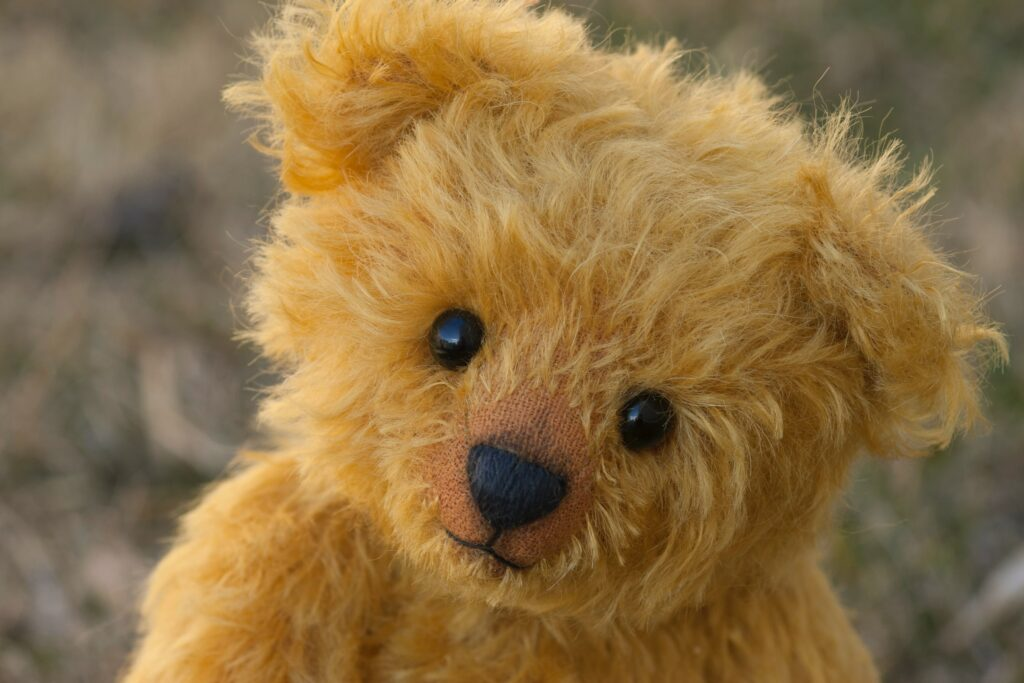 a teddy bear stares into the camera