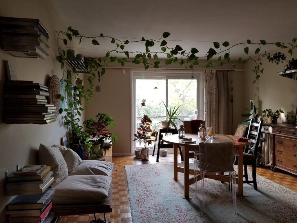 A dining room with patio doors at the end and a lot of plants.